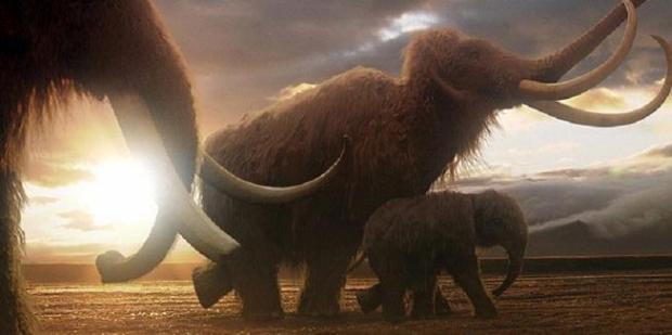 1707384-mammoth-620X310